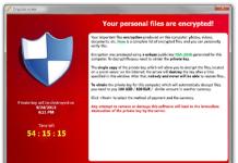 cryptolocker polizia