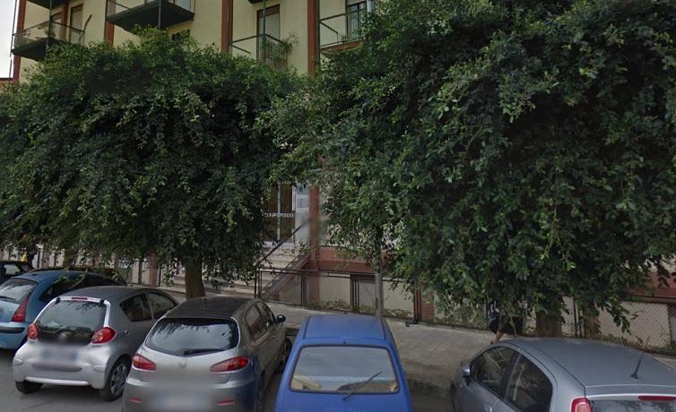 Monreale, rami dentro le abitazioni, chiesta la potatura urgente degli alberi di via della Repubblica