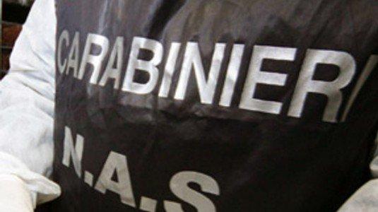 Palermo, sequestrati 110 chili di crema di ricotta congelata al bar Alba