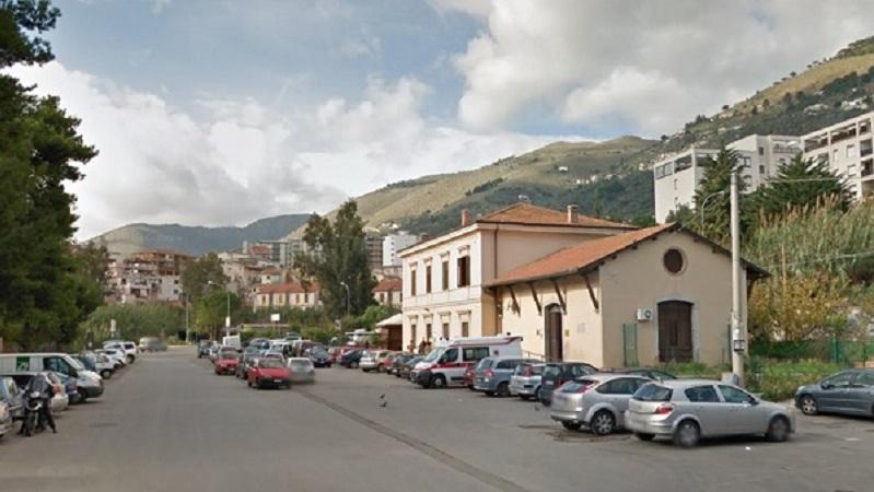 Monreale, i randagi di piazzale Florio, un incubo per gli sportivi