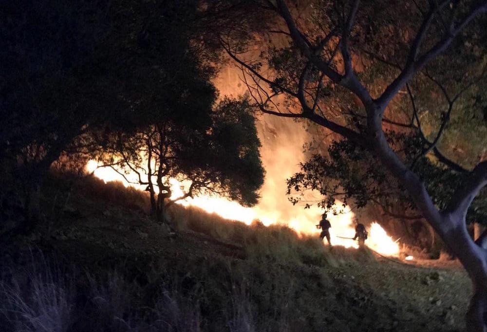 "Incendio a Monte Pellegrino, Orlando ai piromani: ""Vergognatevi"""