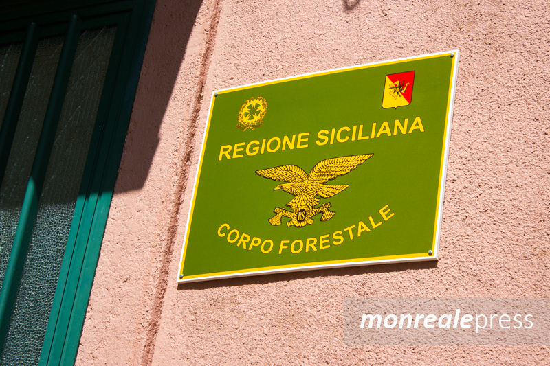 Chiuso distaccamento forestale a San Martino: presentata interrogazione all'Ars