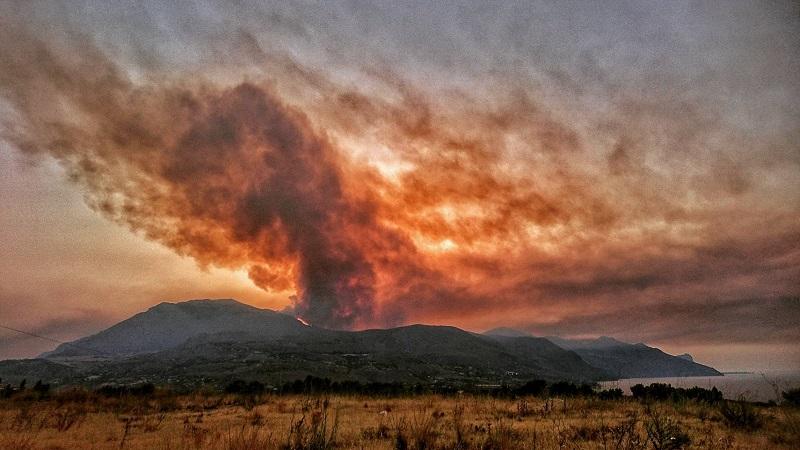Incendi in Sicilia: roghi allo Zingaro, forestale ustionato