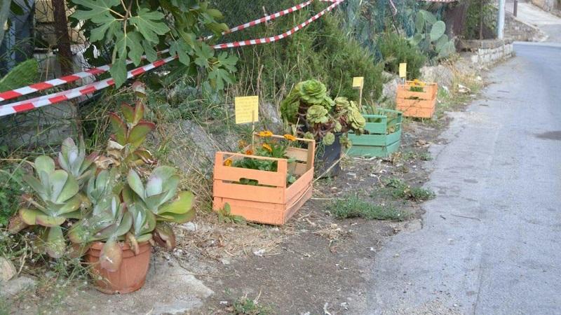 Villaciambra, residenti contro gli incivili: piante e fiori al posto delle discariche abusive