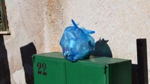rifiuti-villaciambra2