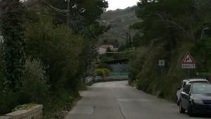 alberi-san-martino1