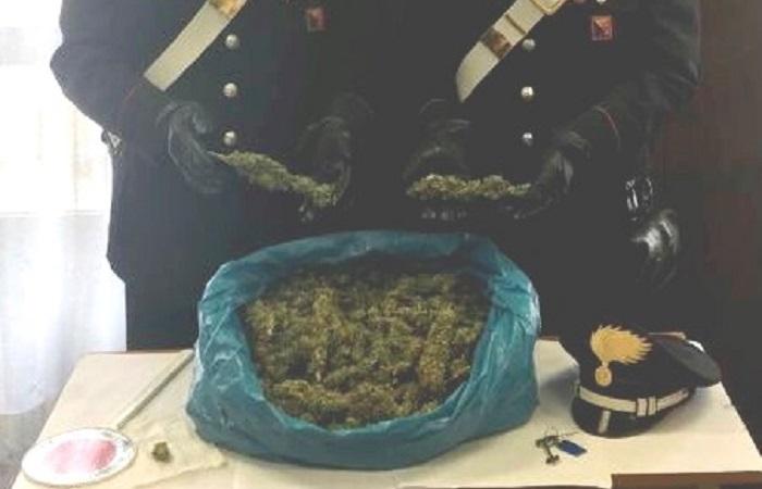 marijuana in casa