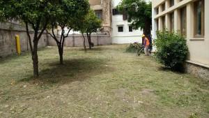 scuola-cavallaro-volontari3