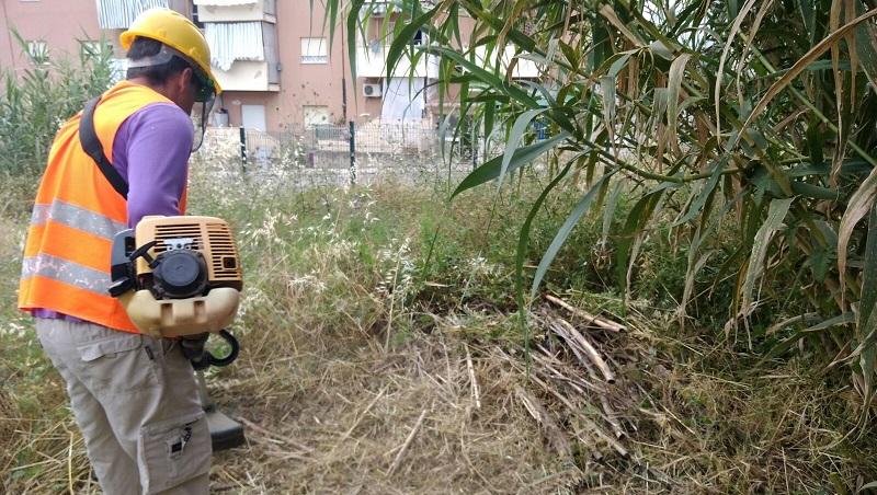 Monreale, ancora volontari in azione: ripulita l'area verde della scuola di fondo Pasqualino