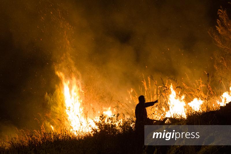 Appiccava il fuoco ai boschi di Monreale, ma di giorno era un forestale: arrestato