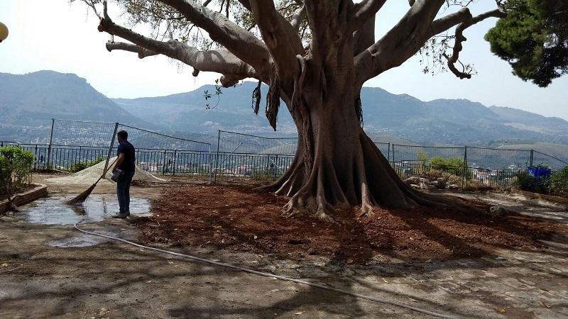 Monreale, sabato riapre il Belvedere dopo i lavori di sistemazione