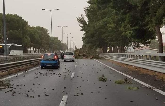 Il vento spazza Palermo: danni e disagi. Autostrada A19 chiusa per alberi caduti
