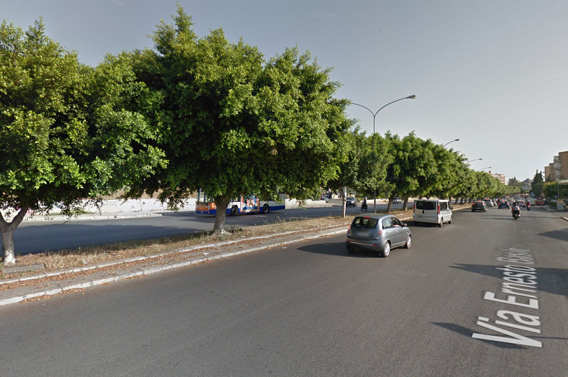 Palermo, corsa clandestina tra cavalli: i carabinieri denunciano tre persone
