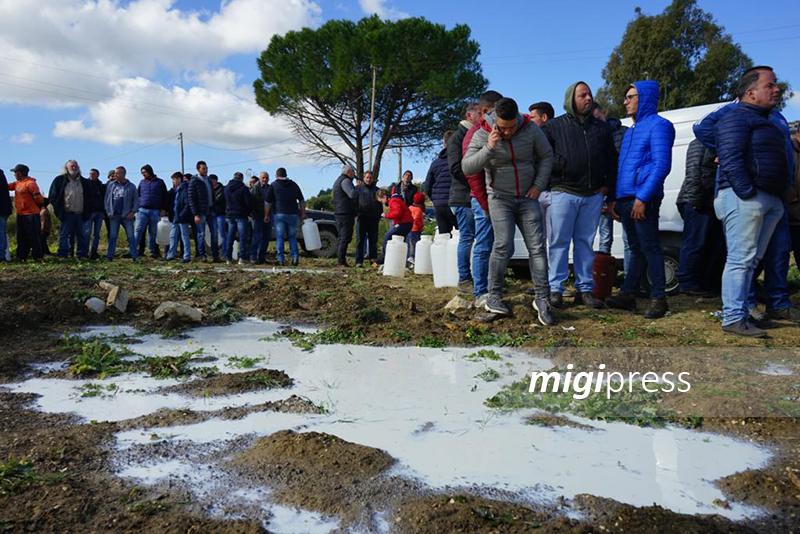 """Anche in Sicilia monta la protesta degli allevatori: """"Latte a prezzi troppo bassi"""""""