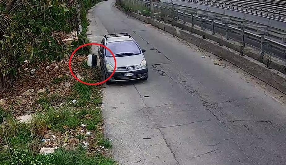 Denunciato l'uomo che ha lanciato dall'auto cuccioli di cane