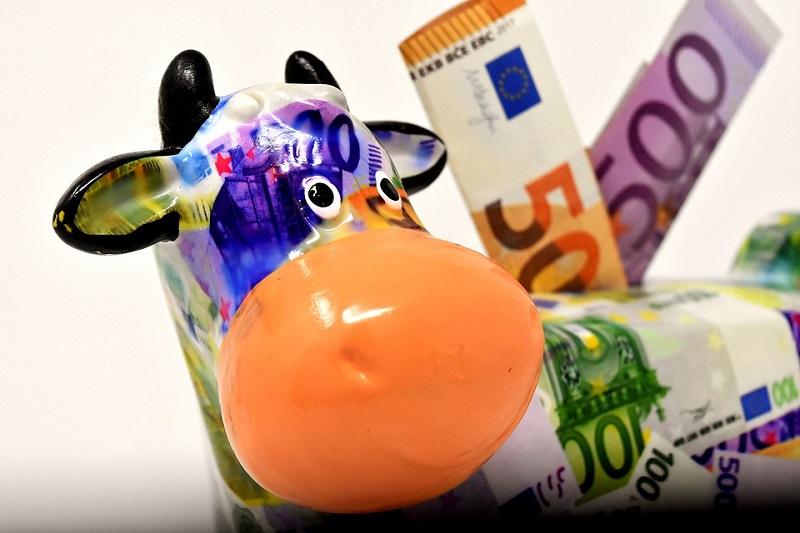 Economia, focus sui piani di accumulo Capitale (PAC): cosa sono e come sceglierli