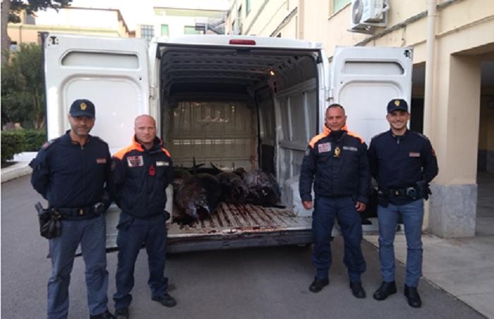 Bloccato con una tonnellata di tonno rosso senza tracciabilità: multa e sequestro