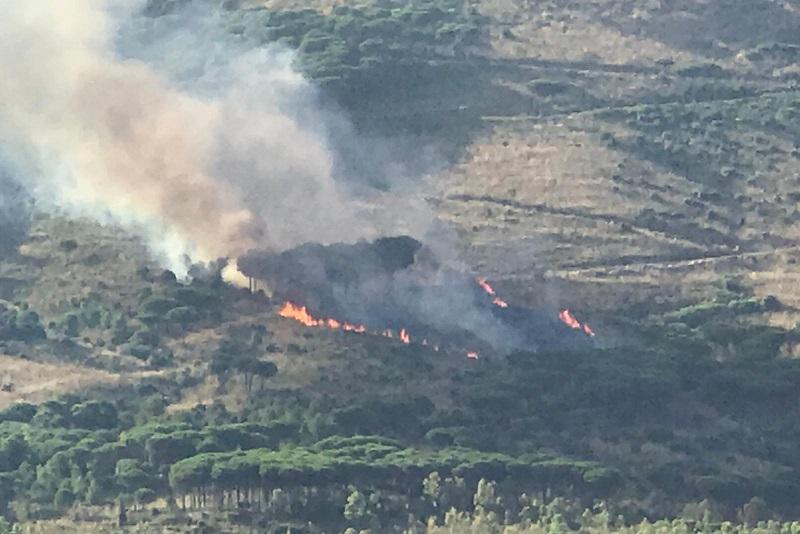Brucia San Martino: fuoco all'interno del bosco di Sant'Anna