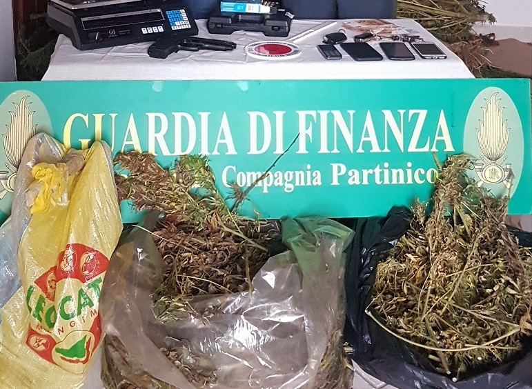 Scoperta piantagione, sequestrate 280 piante e 30 chili di marijuana