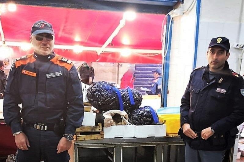 Pescherie abusive e niente tracciabilità: a Ballarò maxi-sequestro di pesce