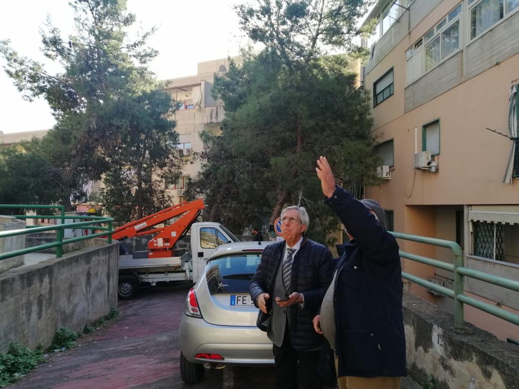Pericolosi per i residenti: volontari potano alberi a piazzale Candido