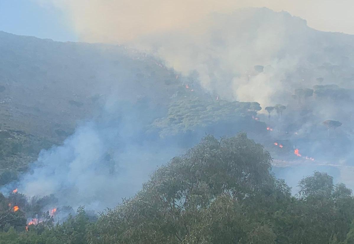 """Incendio """"fuori stagione"""" a San Martino: in cenere ettari di bosco"""