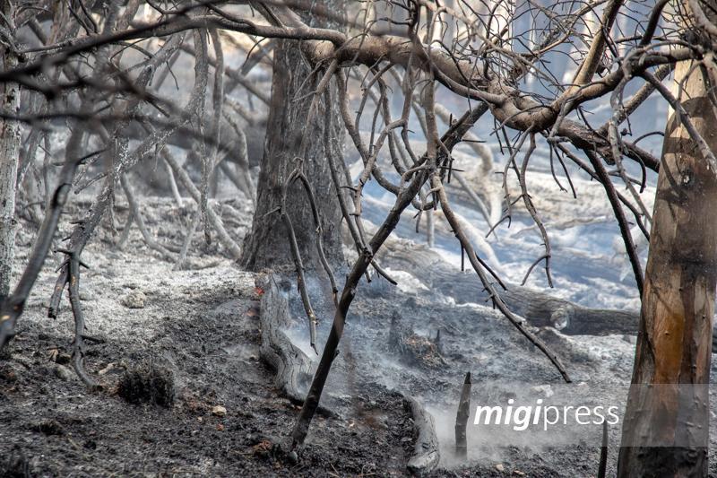 San Martino delle Scale, è ancora inferno di fuoco