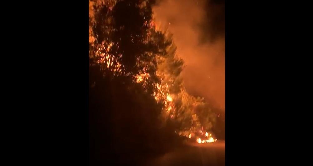 San Martino ancora nel mirino dei piromani: nuovo incendio sulla sp57