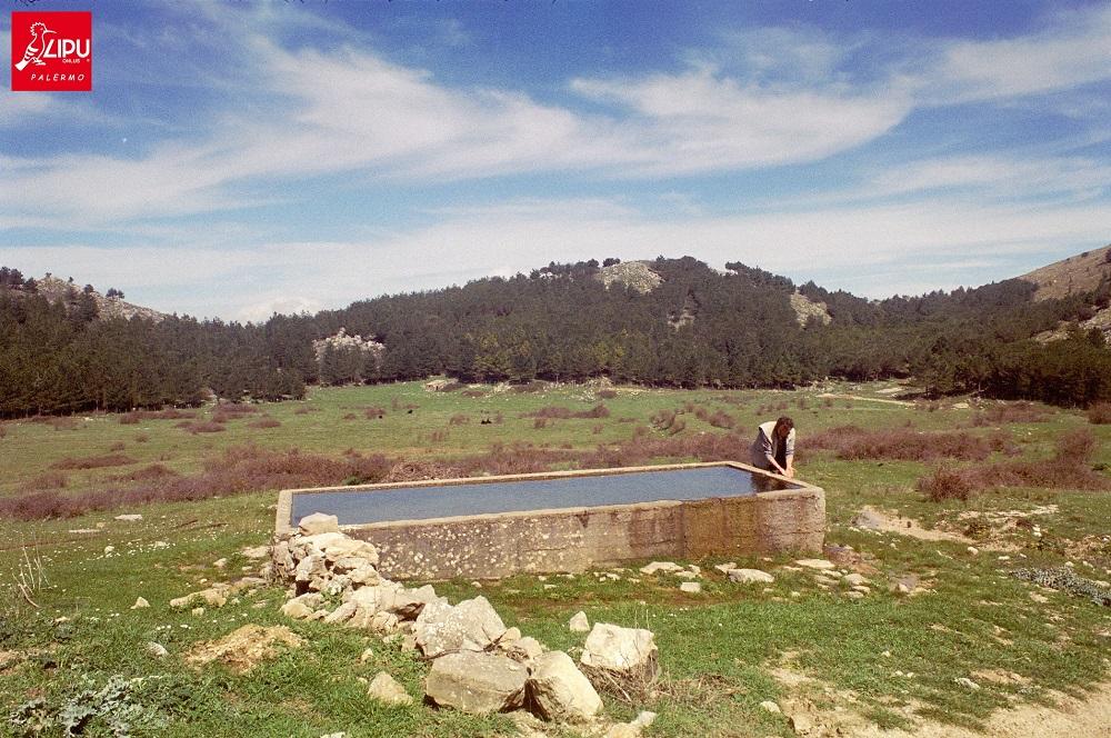 Con la Lipu alla scoperta dei paesaggi e della fauna dei monti di Giacalone