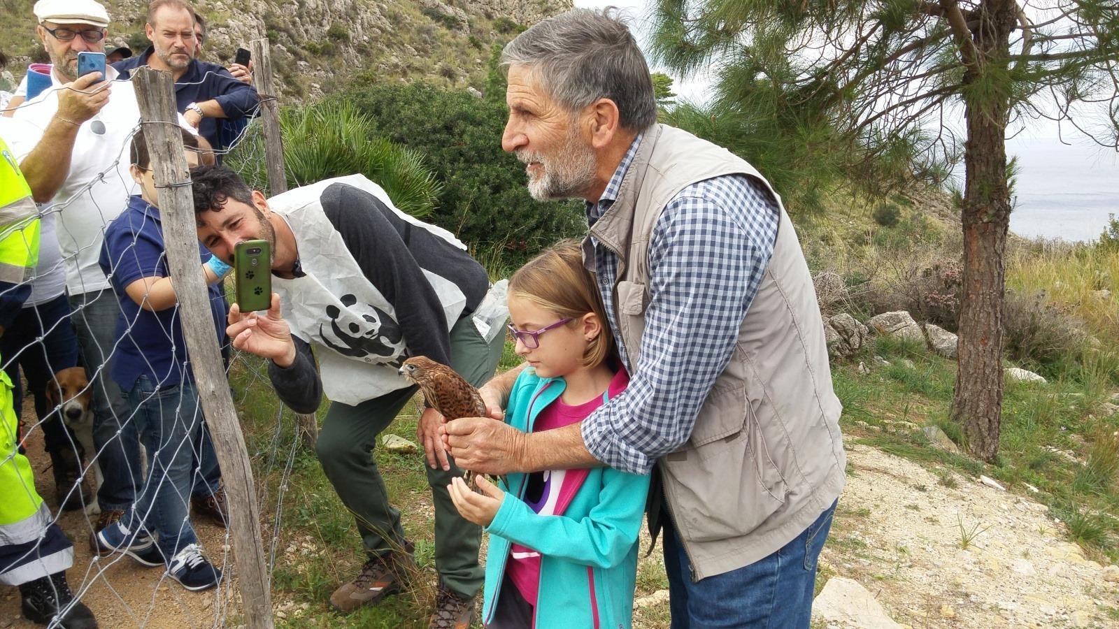 Il Wwf e il Centro di recupero fauna liberano i rapaci curati a Ficuzza