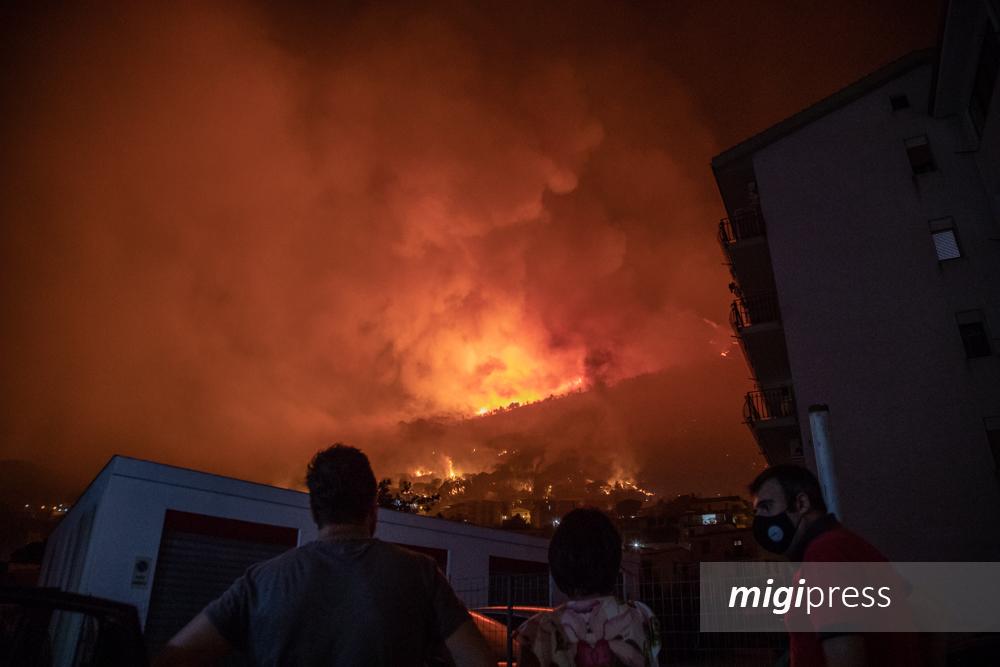 Incendi a Monreale, Altofonte e Piana del 2020: in finanziaria i fondi per i comuni