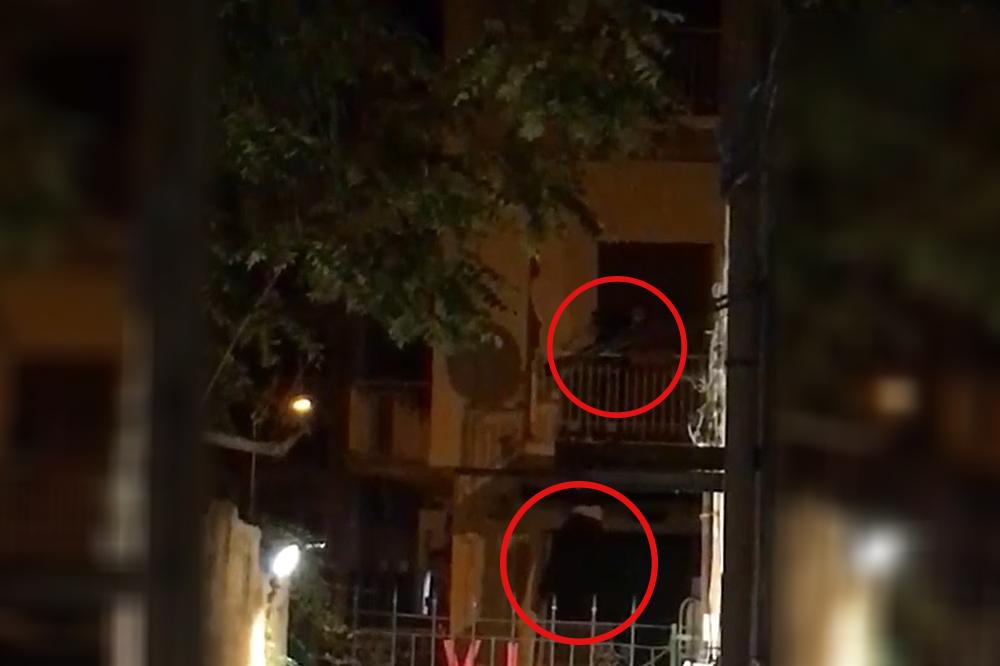 Palermo, si arrampicano su balcone per rubare biciclette: tre arresti – IL VIDEO